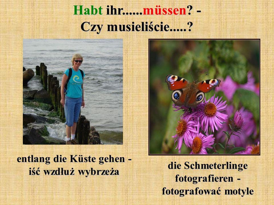 Habt ihr......müssen? - Czy musieliście.....? entlang die Küste gehen - iść wzdłuż wybrzeża die Schmeterlinge fotografieren - fotografować motyle