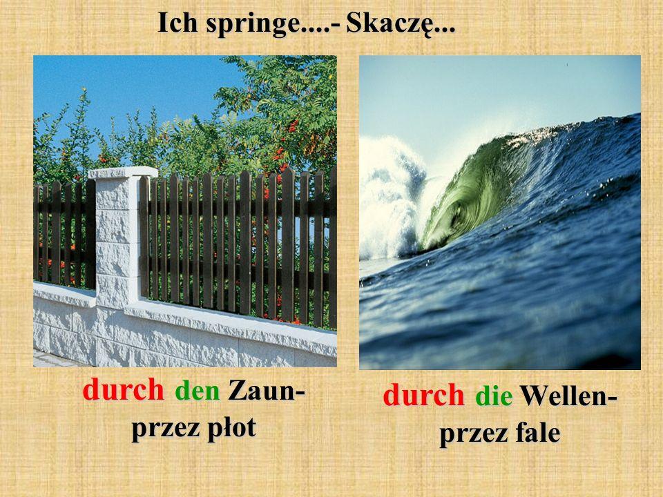 Ich springe....- Skaczę... durch den Zaun- przez płot durch die Wellen- przez fale