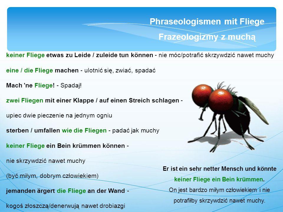 keiner Fliege etwas zu Leide / zuleide tun können - nie móc/potrafić skrzywdzić nawet muchy eine / die Fliege machen - ulotnić się, zwiać, spadać Mach ne Fliege.