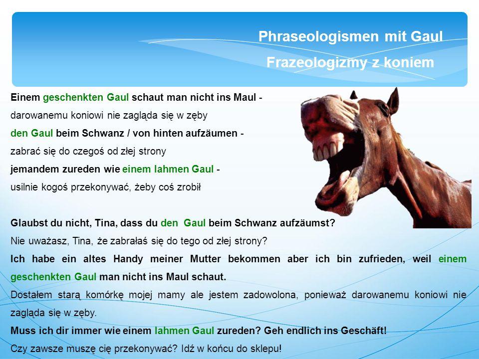 Einem geschenkten Gaul schaut man nicht ins Maul - darowanemu koniowi nie zagląda się w zęby den Gaul beim Schwanz / von hinten aufzäumen - zabrać się do czegoś od złej strony jemandem zureden wie einem lahmen Gaul - usilnie kogoś przekonywać, żeby coś zrobił Glaubst du nicht, Tina, dass du den Gaul beim Schwanz aufzäumst.