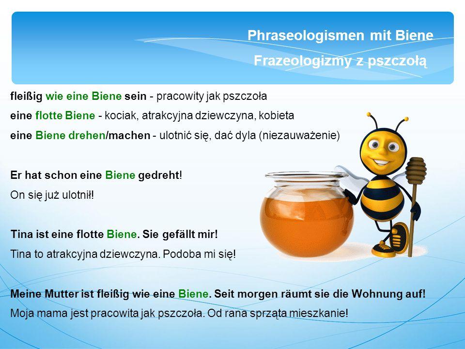 fleißig wie eine Biene sein - pracowity jak pszczoła eine flotte Biene - kociak, atrakcyjna dziewczyna, kobieta eine Biene drehen/machen - ulotnić się, dać dyla (niezauważenie) Er hat schon eine Biene gedreht.
