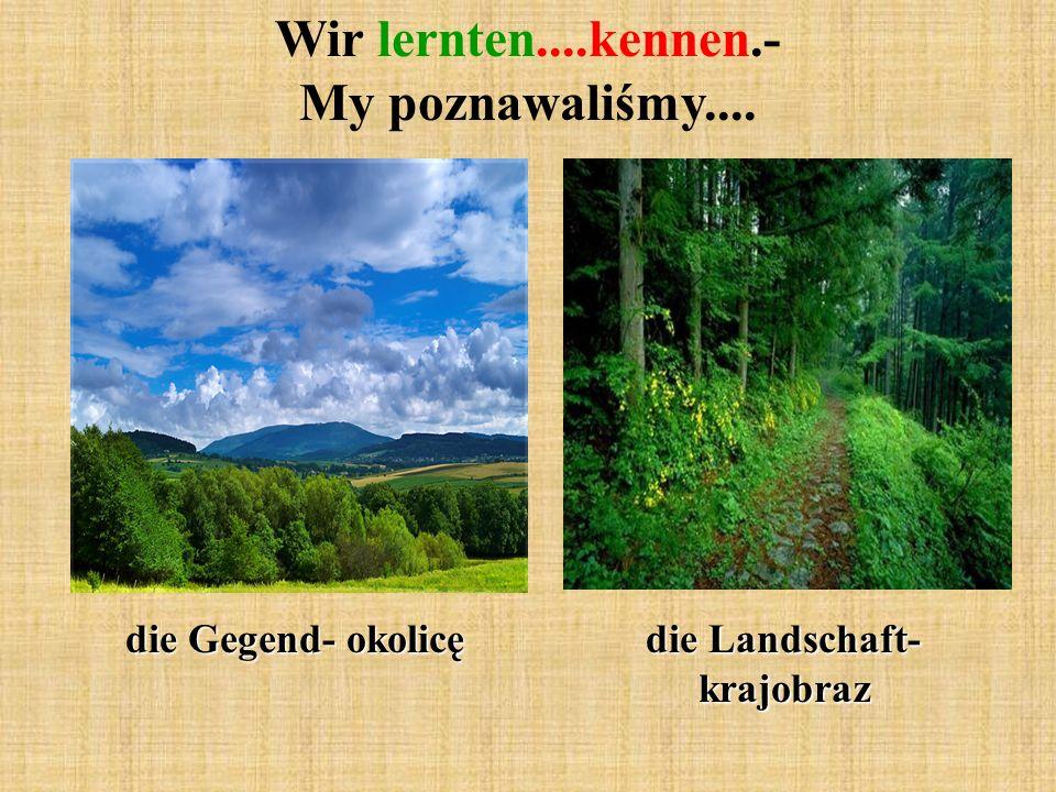 Wir lernten....kennen.- My poznawaliśmy.... die Gegend- okolicę die Landschaft- krajobraz
