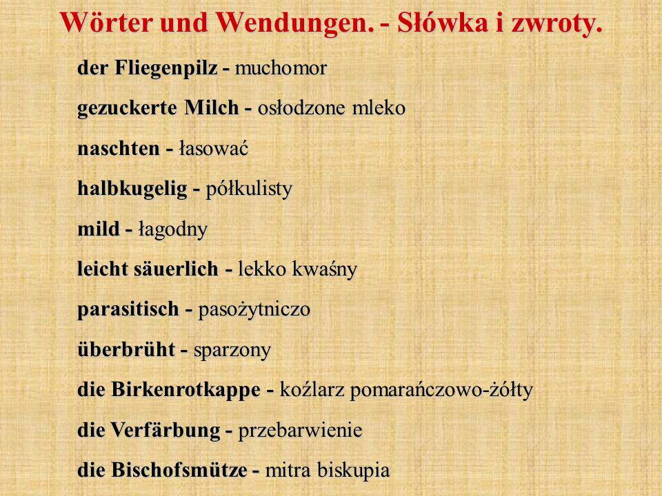 der Fliegenpilz - muchomor gezuckerte Milch - osłodzone mleko naschten - łasować halbkugelig - półkulisty mild - łagodny leicht säuerlich - lekko kwaś
