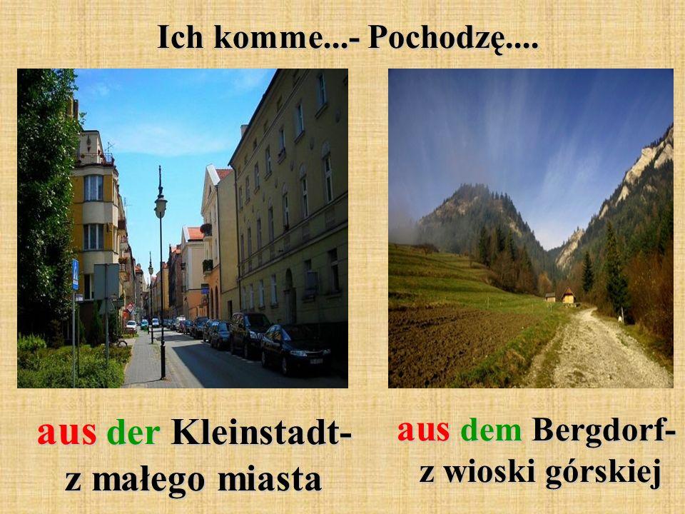 Ich komme...- Pochodzę.... aus der Kleinstadt- z małego miasta aus dem Bergdorf- z wioski górskiej