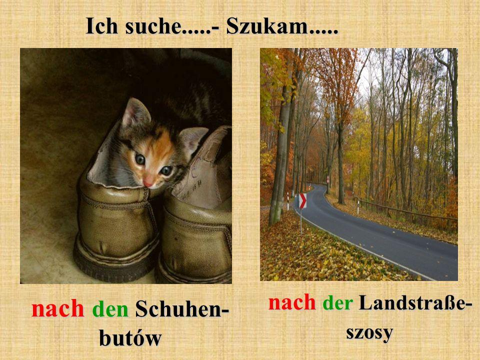 Ich suche.....- Szukam..... nach den Schuhen- butów nach der Landstraße- szosy