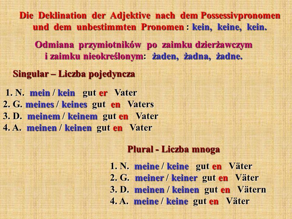 Die Deklination der Adjektive nach dem Possessivpronomen und dem unbestimmten Pronomen : kein, keine, kein. Odmiana przymiotników po zaimku dzierżawcz