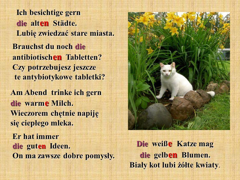 Die weiß e Katze mag die gelb en Blumen. Biały kot lubi żółte kwiaty. Ich besichtige gern die alt en Städte. Lubię zwiedzać stare miasta. Brauchst du