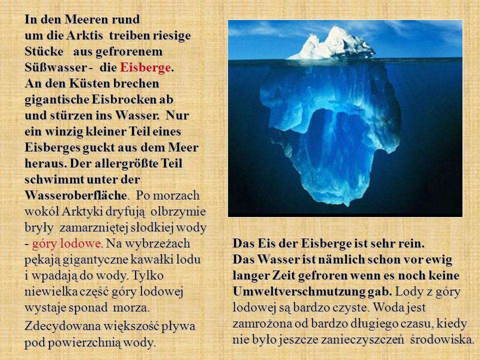 In den Meeren rund um die Arktis treiben riesige Stücke aus gefrorenem Süßwasser - die Eisberge. An den Küsten brechen gigantische Eisbrocken ab und s