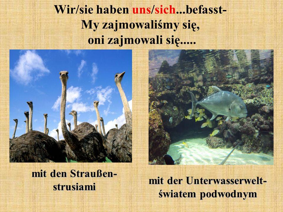 Wir/sie haben uns/sich...befasst- My zajmowaliśmy się, oni zajmowali się..... mit den Straußen- strusiami mit der Unterwasserwelt- światem podwodnym