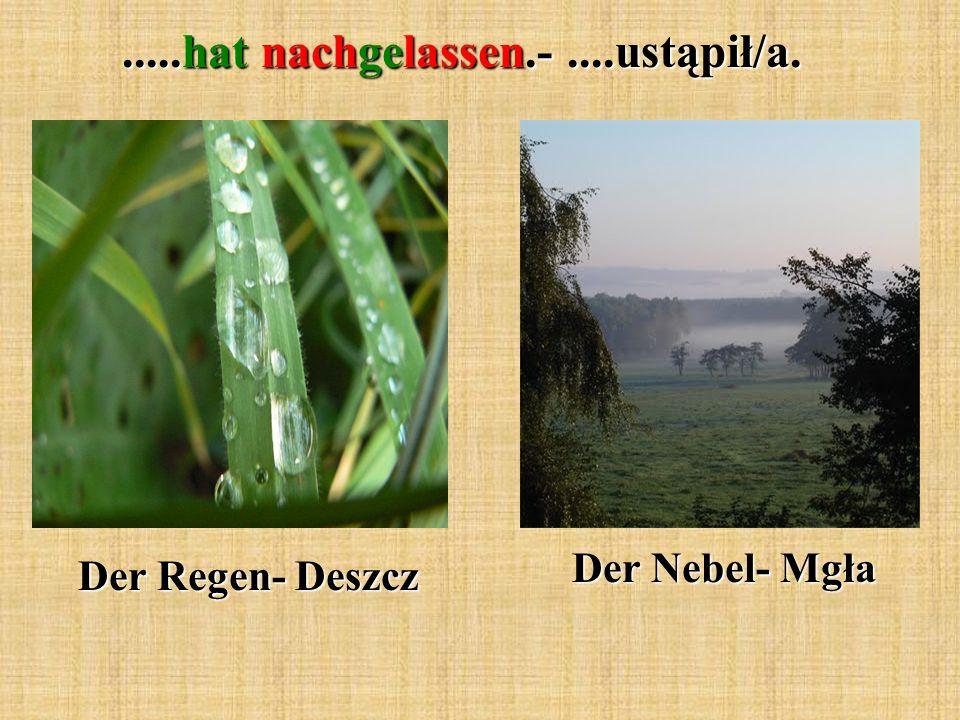 .....hat nachgelassen.-....ustąpił/a. Der Regen- Deszcz Der Nebel- Mgła