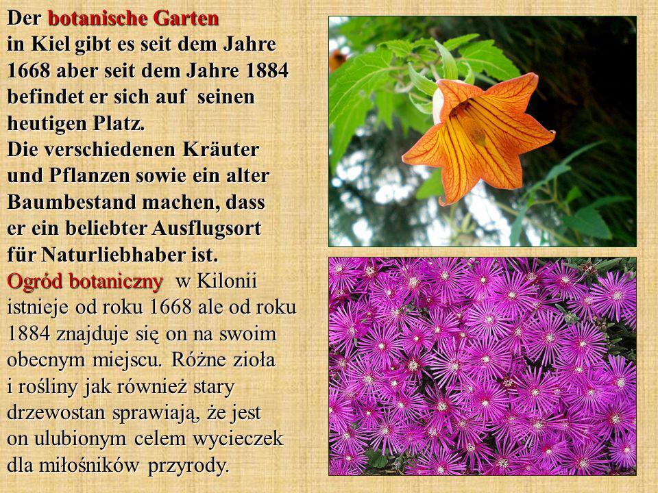 Der botanische Garten in Kiel gibt es seit dem Jahre 1668 aber seit dem Jahre 1884 befindet er sich auf seinen heutigen Platz.