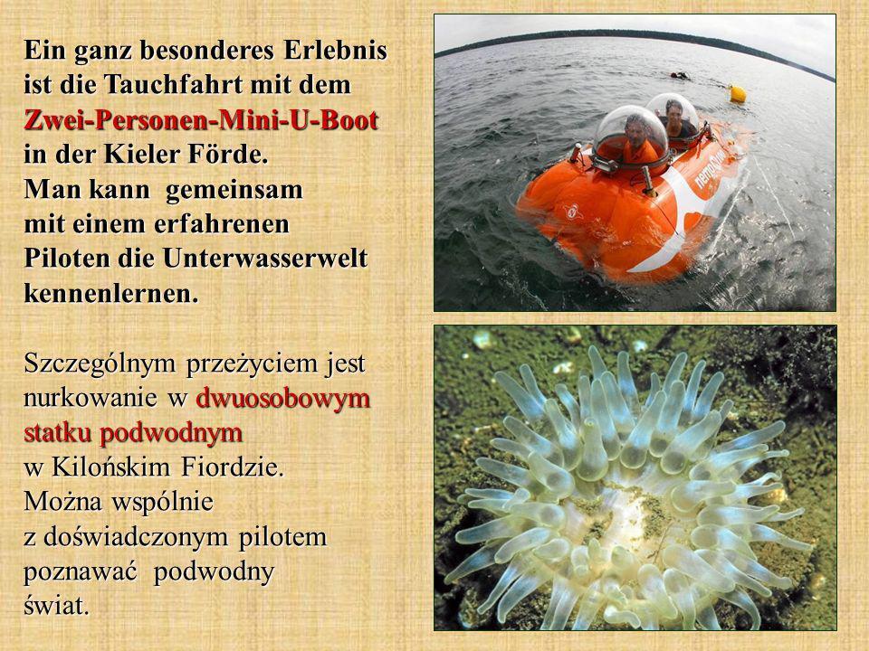 Ein ganz besonderes Erlebnis ist die Tauchfahrt mit dem Zwei-Personen-Mini-U-Boot in der Kieler Förde.