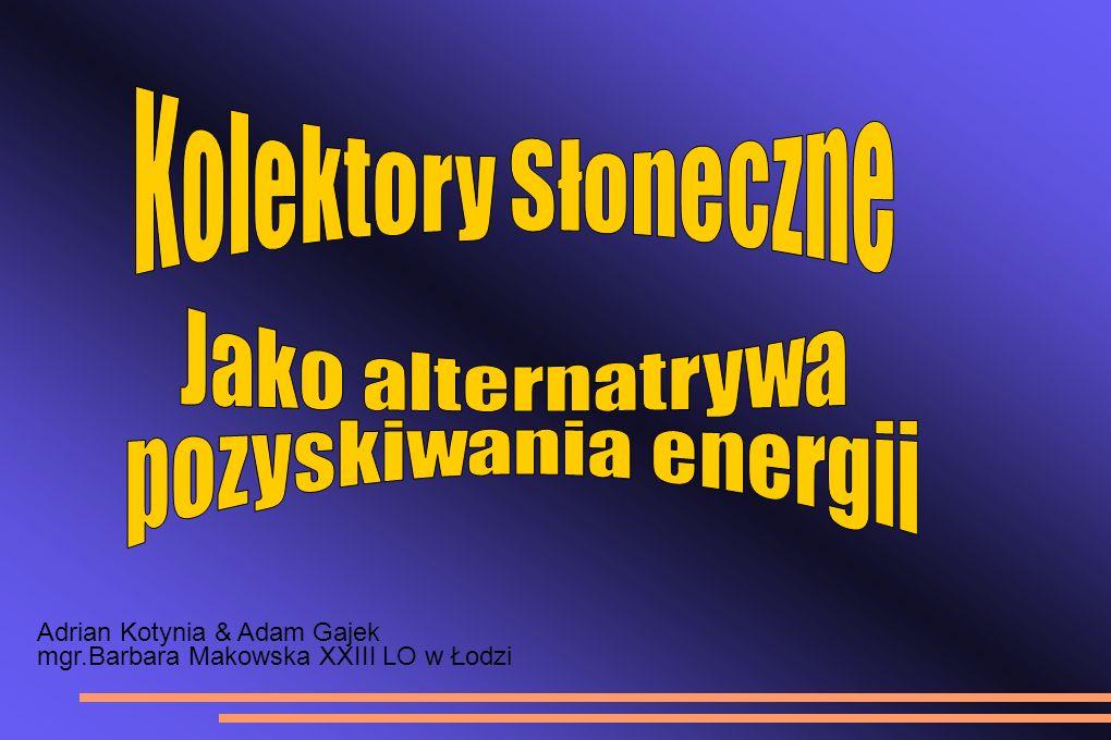 Adrian Kotynia & Adam Gajek mgr.Barbara Makowska XXIII LO w Łodzi