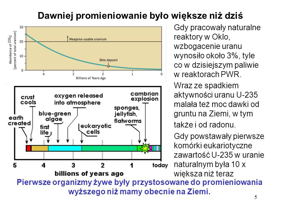 5 Dawniej promieniowanie było większe niż dziś Gdy pracowały naturalne reaktory w Oklo, wzbogacenie uranu wynosiło około 3%, tyle co w dzisiejszym pal