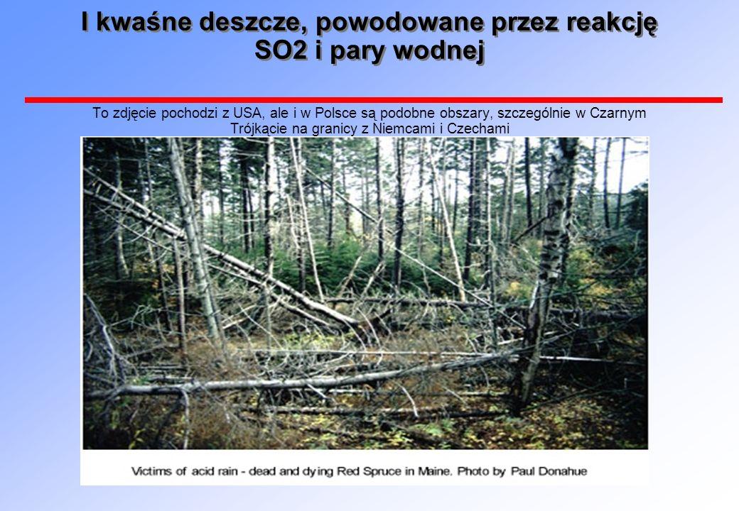 I kwaśne deszcze, powodowane przez reakcję SO2 i pary wodnej To zdjęcie pochodzi z USA, ale i w Polsce są podobne obszary, szczególnie w Czarnym Trójkącie na granicy z Niemcami i Czechami