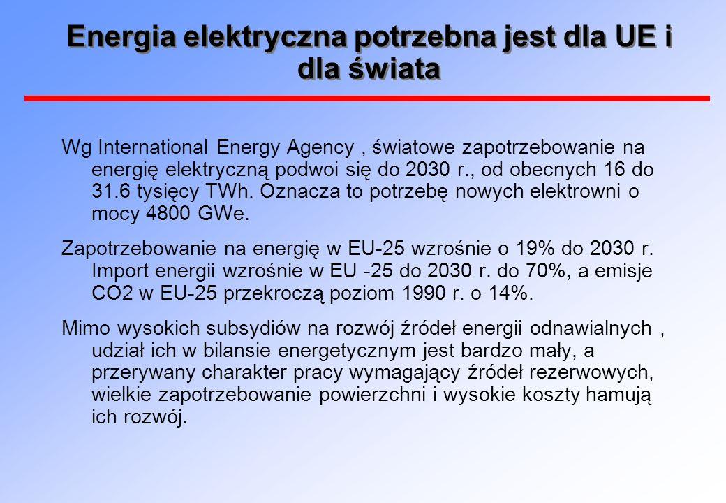 Energia elektryczna potrzebna jest dla UE i dla świata Wg International Energy Agency, światowe zapotrzebowanie na energię elektryczną podwoi się do 2030 r., od obecnych 16 do 31.6 tysięcy TWh.