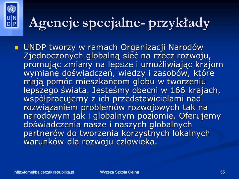http://tomekbalcerzak.republika.pl 55Wyższa Szkoła Celna Agencje specjalne- przykłady UNDP tworzy w ramach Organizacji Narodów Zjednoczonych globalną
