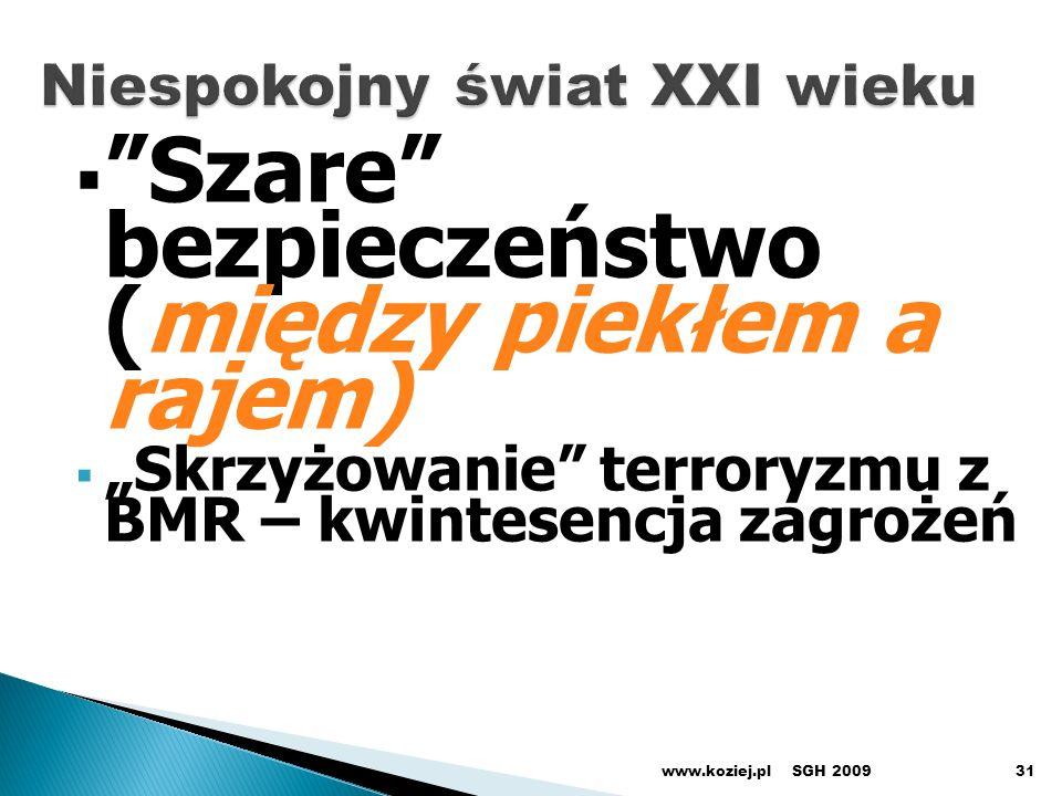 Szare bezpieczeństwo (między piekłem a rajem) Skrzyżowanie terroryzmu z BMR – kwintesencja zagrożeń SGH 2009www.koziej.pl31