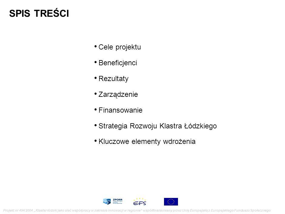 Projekt Klaster łódzki jako sieć współpracy w zakresie innowacji w regionie Projekt nr 494/2004 Klaster łódzki jako sieć współpracy w zakresie innowac