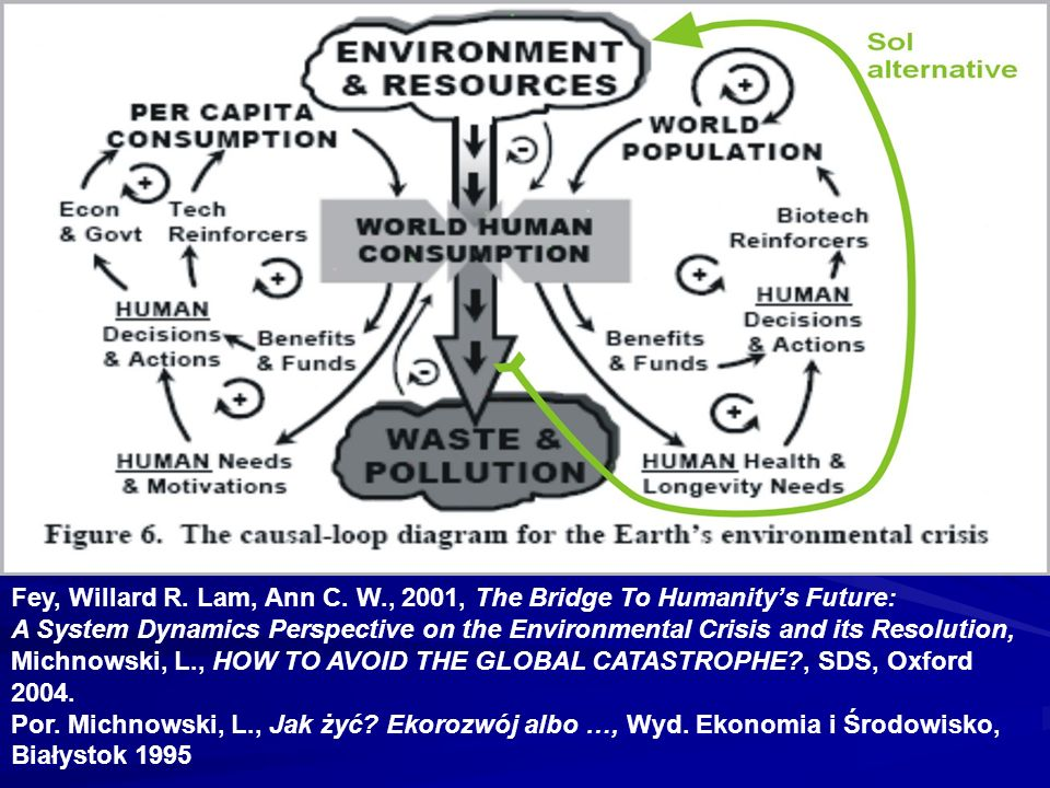 Fey, Willard R. Lam, Ann C. W., 2001, The Bridge To Humanitys Future: A System Dynamics Perspective on the Environmental Crisis and its Resolution, Mi