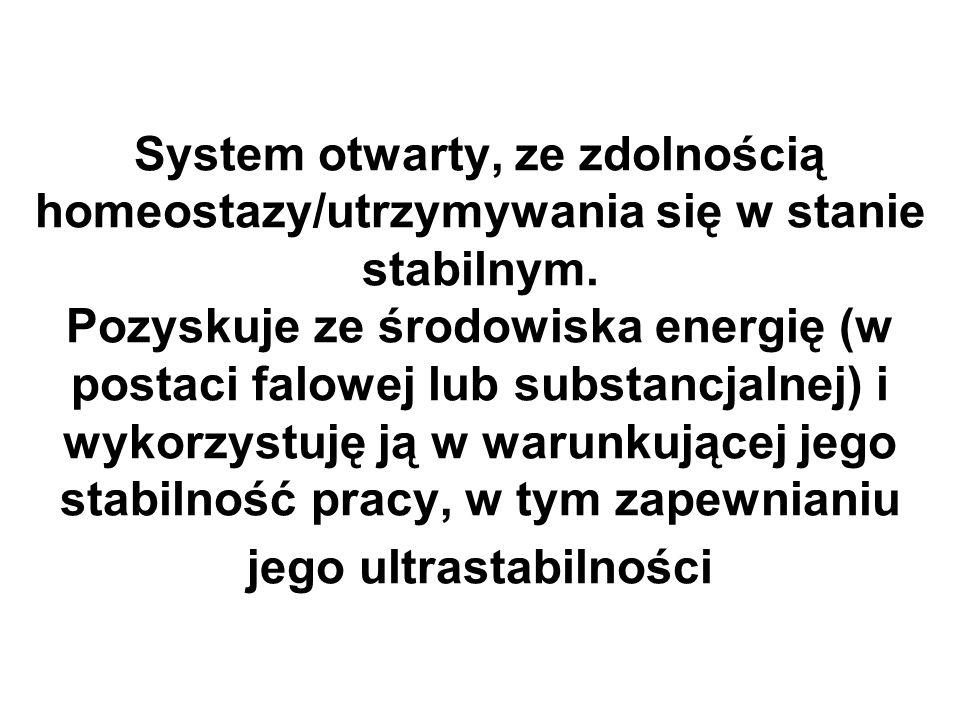System otwarty, ze zdolnością homeostazy/utrzymywania się w stanie stabilnym. Pozyskuje ze środowiska energię (w postaci falowej lub substancjalnej) i