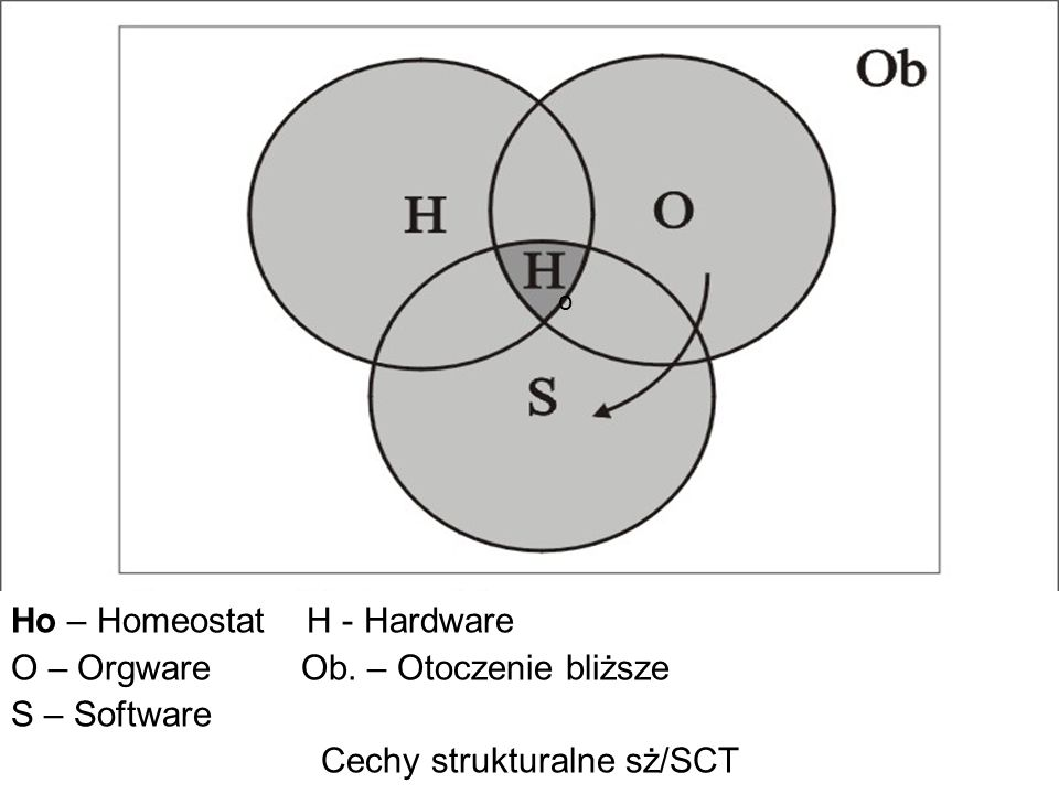 Ho – Homeostat H - Hardware O – Orgware Ob. – Otoczenie bliższe S – Software Cechy strukturalne sż/SCT o