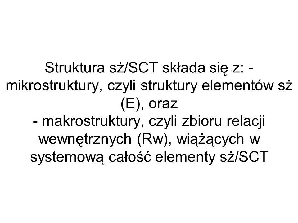 Struktura sż/SCT składa się z: - mikrostruktury, czyli struktury elementów sż (E), oraz - makrostruktury, czyli zbioru relacji wewnętrznych (Rw), wiążących w systemową całość elementy sż/SCT