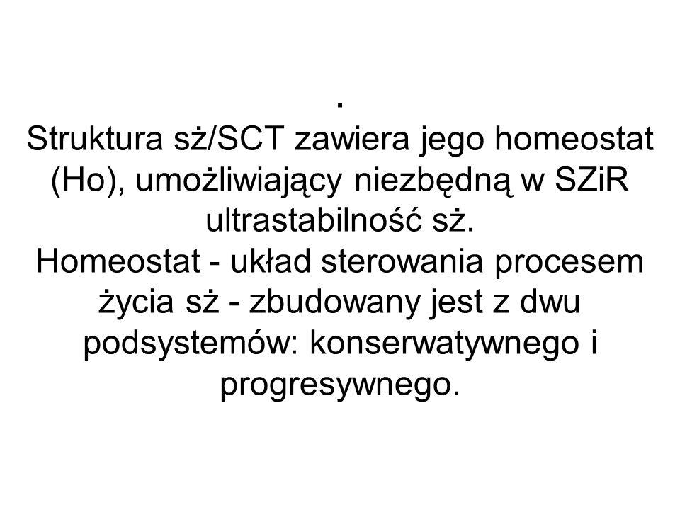 . Struktura sż/SCT zawiera jego homeostat (Ho), umożliwiający niezbędną w SZiR ultrastabilność sż. Homeostat - układ sterowania procesem życia sż - zb