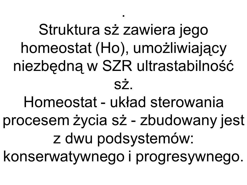 . Struktura sż zawiera jego homeostat (Ho), umożliwiający niezbędną w SZR ultrastabilność sż. Homeostat - układ sterowania procesem życia sż - zbudowa