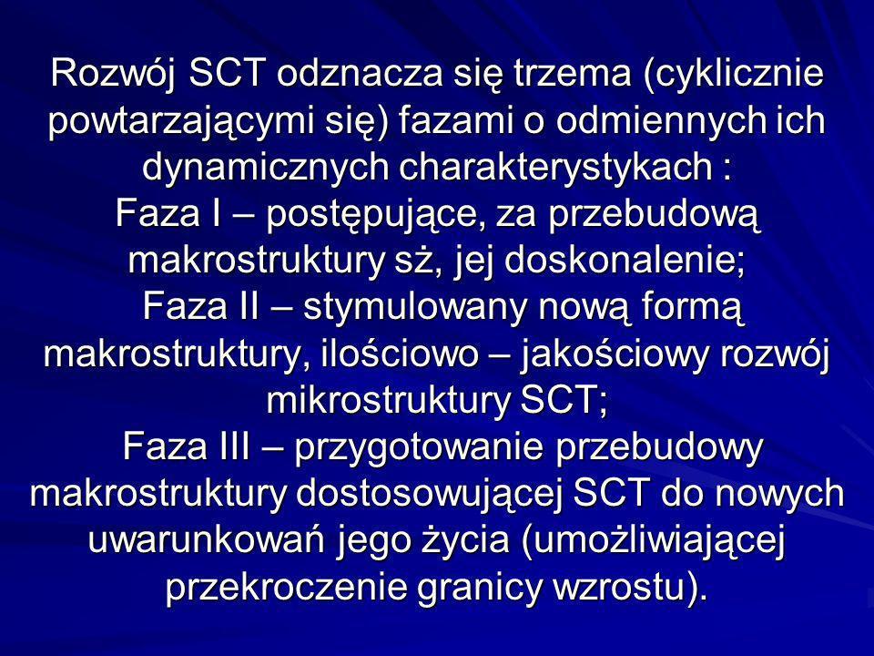 Rozwój SCT odznacza się trzema (cyklicznie powtarzającymi się) fazami o odmiennych ich dynamicznych charakterystykach : Faza I – postępujące, za przebudową makrostruktury sż, jej doskonalenie; Faza II – stymulowany nową formą makrostruktury, ilościowo – jakościowy rozwój mikrostruktury SCT; Faza III – przygotowanie przebudowy makrostruktury dostosowującej SCT do nowych uwarunkowań jego życia (umożliwiającej przekroczenie granicy wzrostu).
