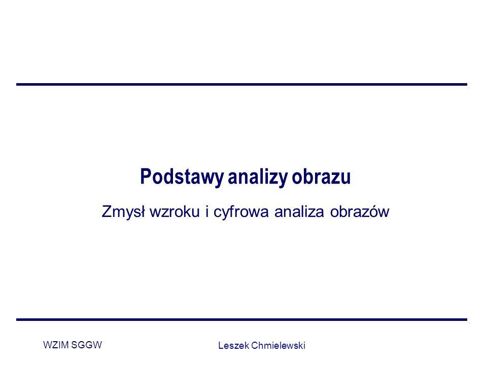 WZIM SGGW Leszek Chmielewski Podstawy analizy obrazu Zmysł wzroku i cyfrowa analiza obrazów