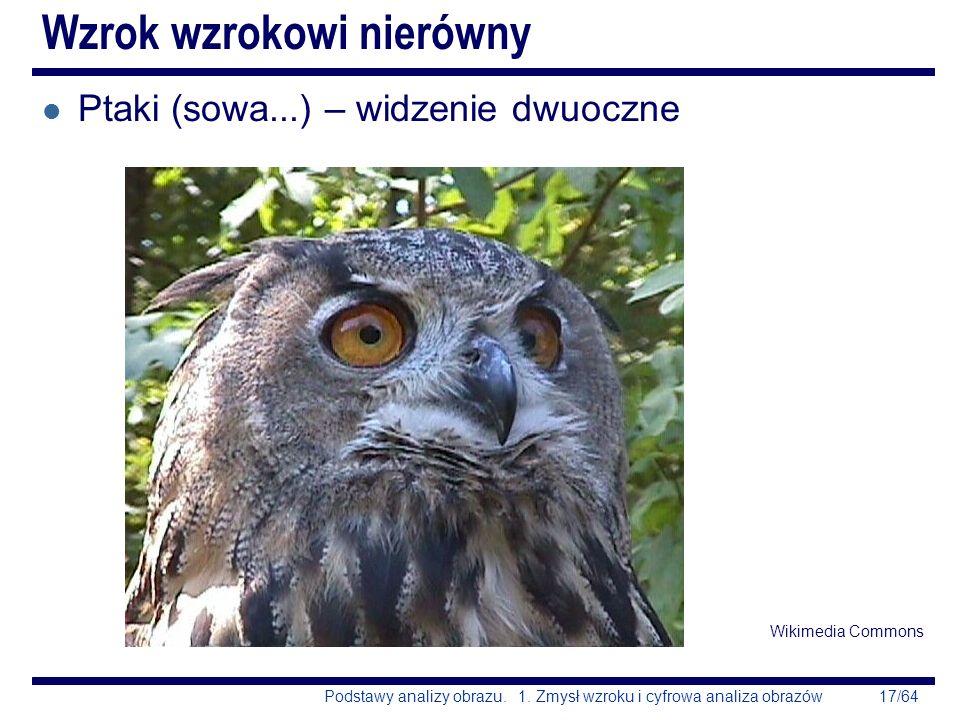 17/64Podstawy analizy obrazu. 1. Zmysł wzroku i cyfrowa analiza obrazów Wzrok wzrokowi nierówny l Ptaki (sowa...) – widzenie dwuoczne Wikimedia Common