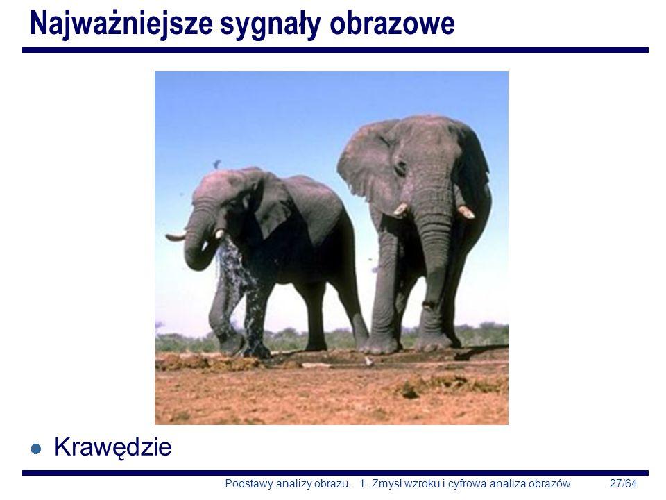 27/64Podstawy analizy obrazu. 1. Zmysł wzroku i cyfrowa analiza obrazów Najważniejsze sygnały obrazowe l Krawędzie