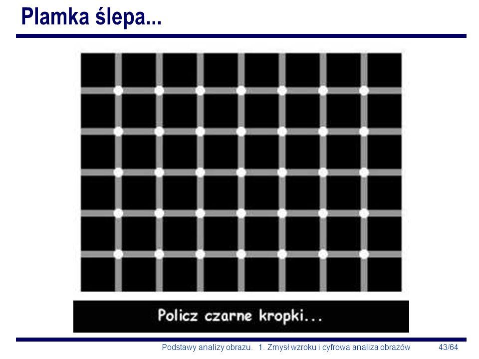 43/64Podstawy analizy obrazu. 1. Zmysł wzroku i cyfrowa analiza obrazów Plamka ślepa...