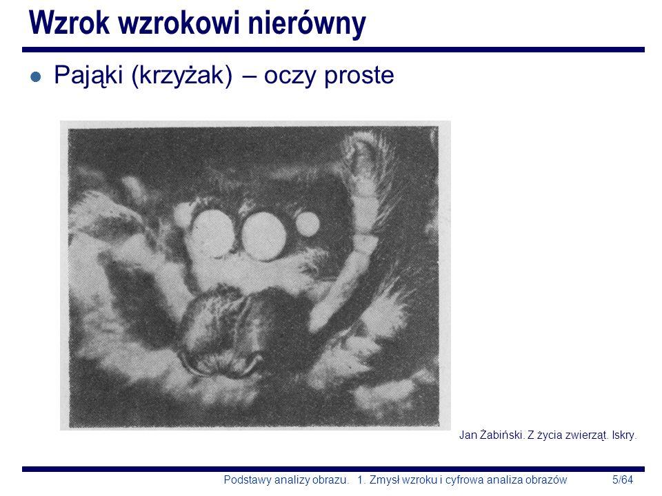 5/64Podstawy analizy obrazu. 1. Zmysł wzroku i cyfrowa analiza obrazów Wzrok wzrokowi nierówny l Pająki (krzyżak) – oczy proste Jan Żabiński. Z życia