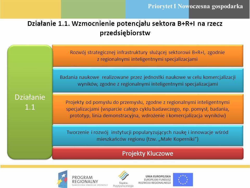 Działanie 1.1. Wzmocnienie potencjału sektora B+R+I na rzecz przedsiębiorstw Rozwój strategicznej infrastruktury służącej sektorowi B+R+I, zgodnie z r