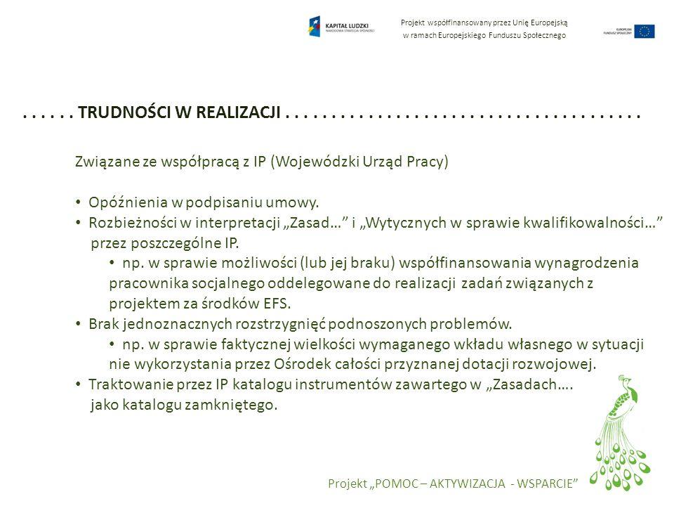 Projekt współfinansowany przez Unię Europejską w ramach Europejskiego Funduszu Społecznego Projekt POMOC – AKTYWIZACJA - WSPARCIE...... TRUDNOŚCI W RE