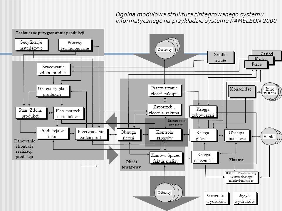 Ogólna modułowa struktura zintegrowanego systemu informatycznego na przykładzie systemu KAMELEON 2000