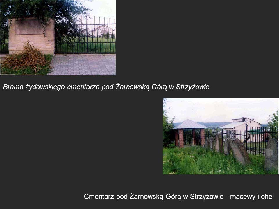 Brama żydowskiego cmentarza pod Żarnowską Górą w Strzyżowie Cmentarz pod Żarnowską Górą w Strzyżowie - macewy i ohel