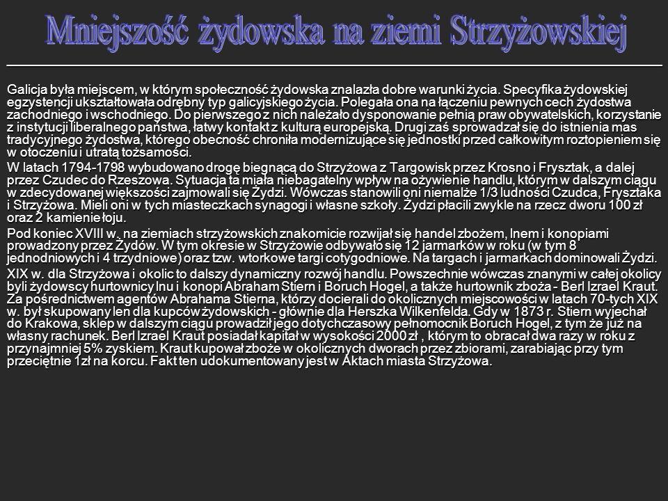 Zarząd Miejski miasta Strzyżowa z XIX / XX wieku; m.in.