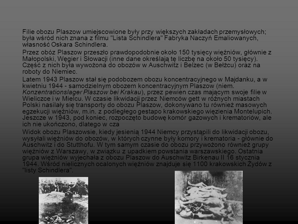 Filie obozu Plaszow umiejscowione były przy większych zakładach przemysłowych; była wśród nich znana z filmu