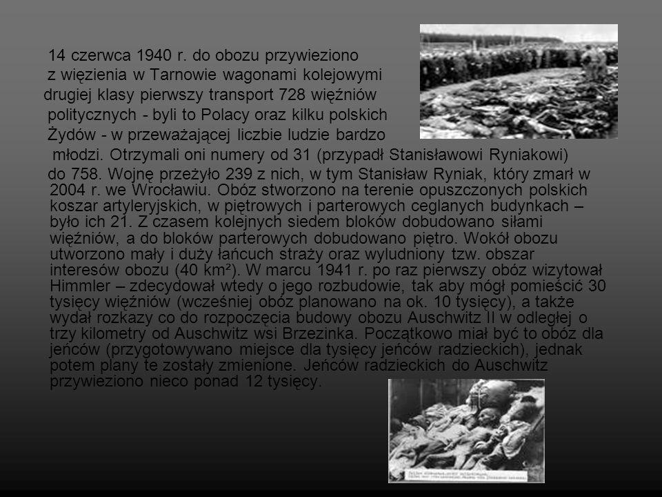 14 czerwca 1940 r. do obozu przywieziono z więzienia w Tarnowie wagonami kolejowymi drugiej klasy pierwszy transport 728 więźniów politycznych - byli