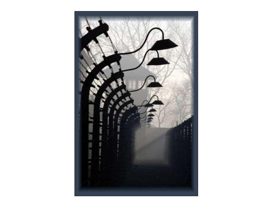 Holokaust – określenie stosowane do prześladowań i zagłady milionów żydów przez władze III rzeszy oraz jej sojuszników w okresie II wojny światowej