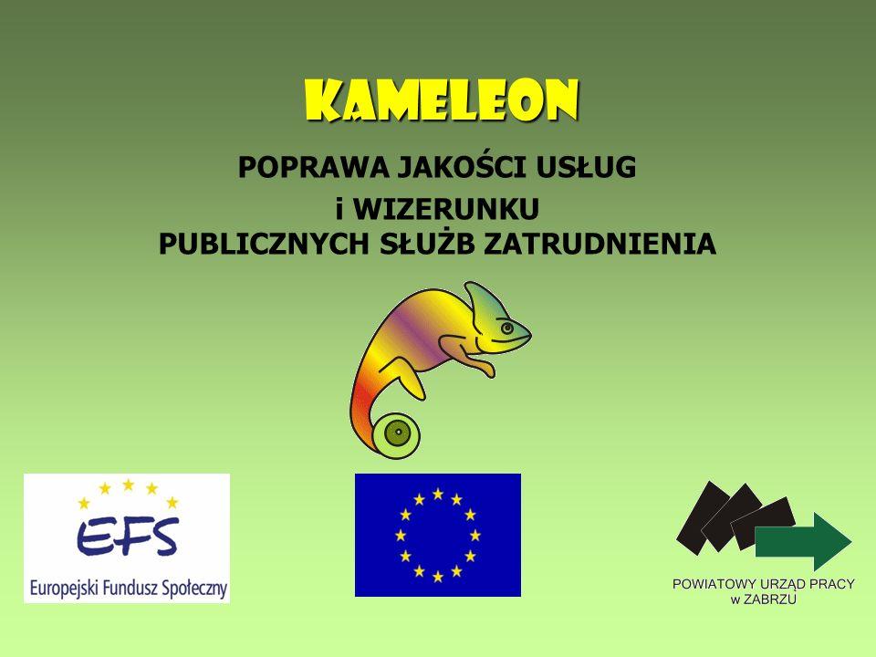 12 KAMELEON REZULTATY PROJEKTU Europejski Certyfikat Umiejętności Komputerowych ECDL.