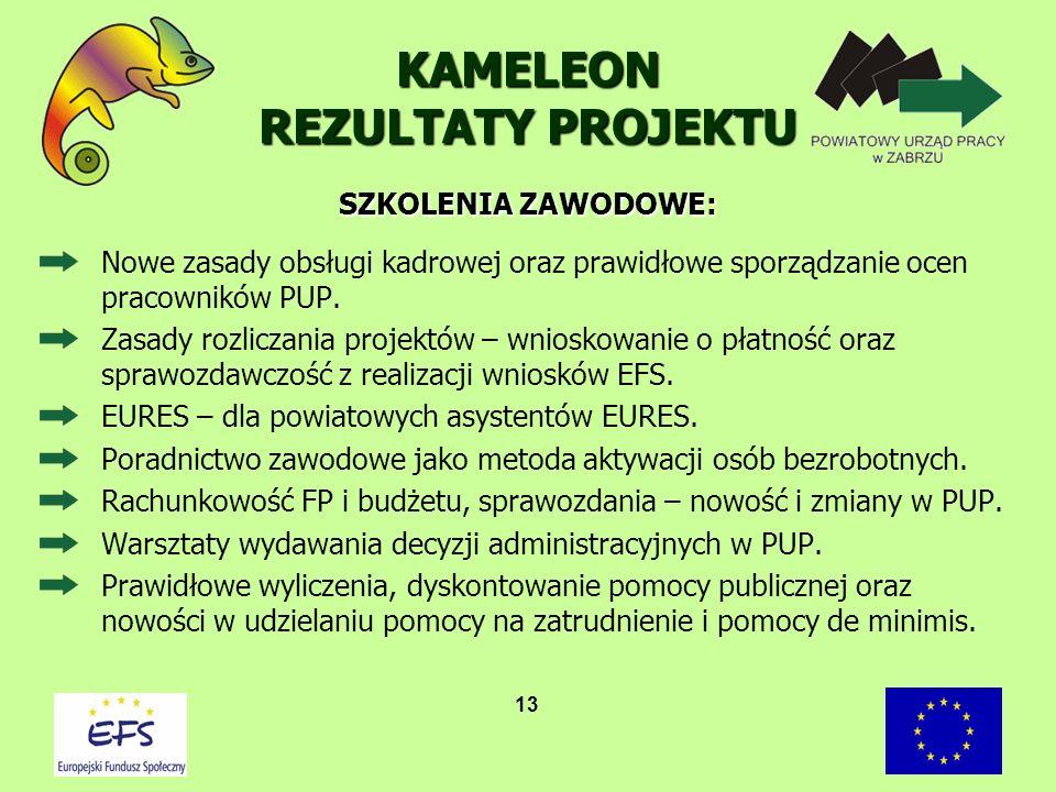 13 KAMELEON REZULTATY PROJEKTU Nowe zasady obsługi kadrowej oraz prawidłowe sporządzanie ocen pracowników PUP. Zasady rozliczania projektów – wnioskow