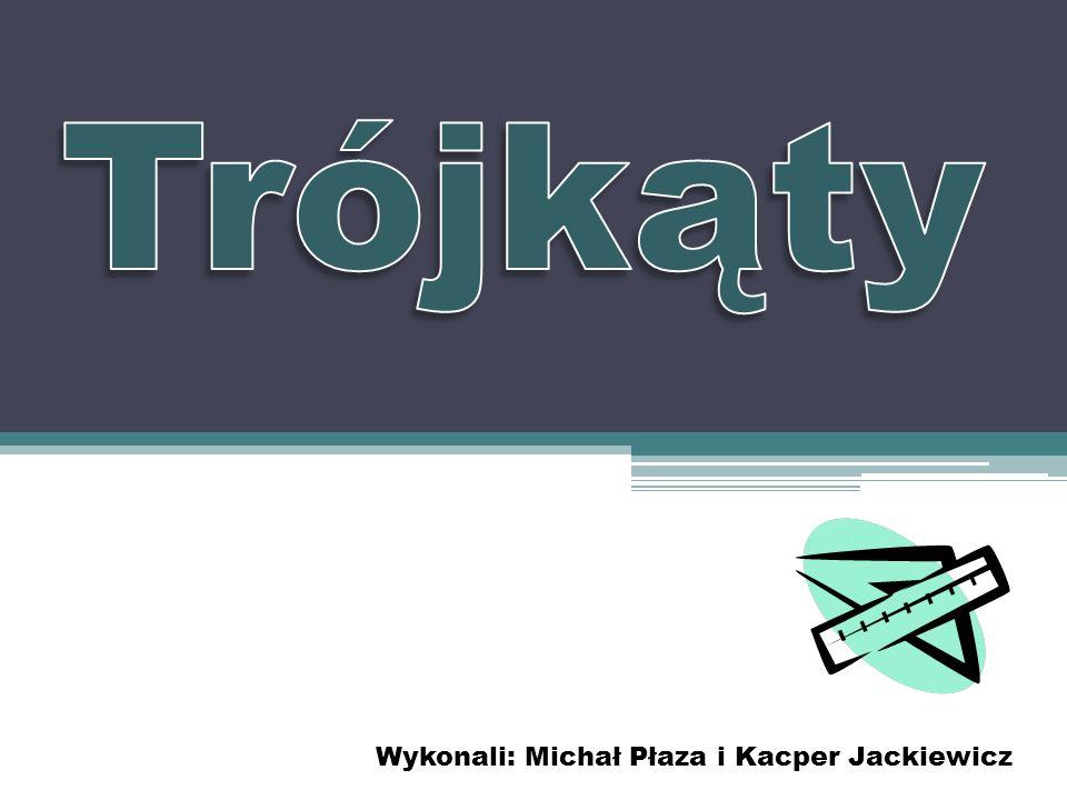 Wykonali: Michał Płaza i Kacper Jackiewicz