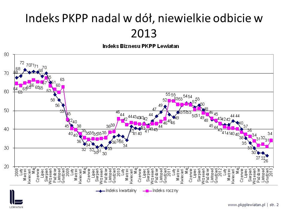 Indeksy czynników: popyt w dół, makrostabilnie, finanse w górę www.pkpplewiatan.pl | str. 3
