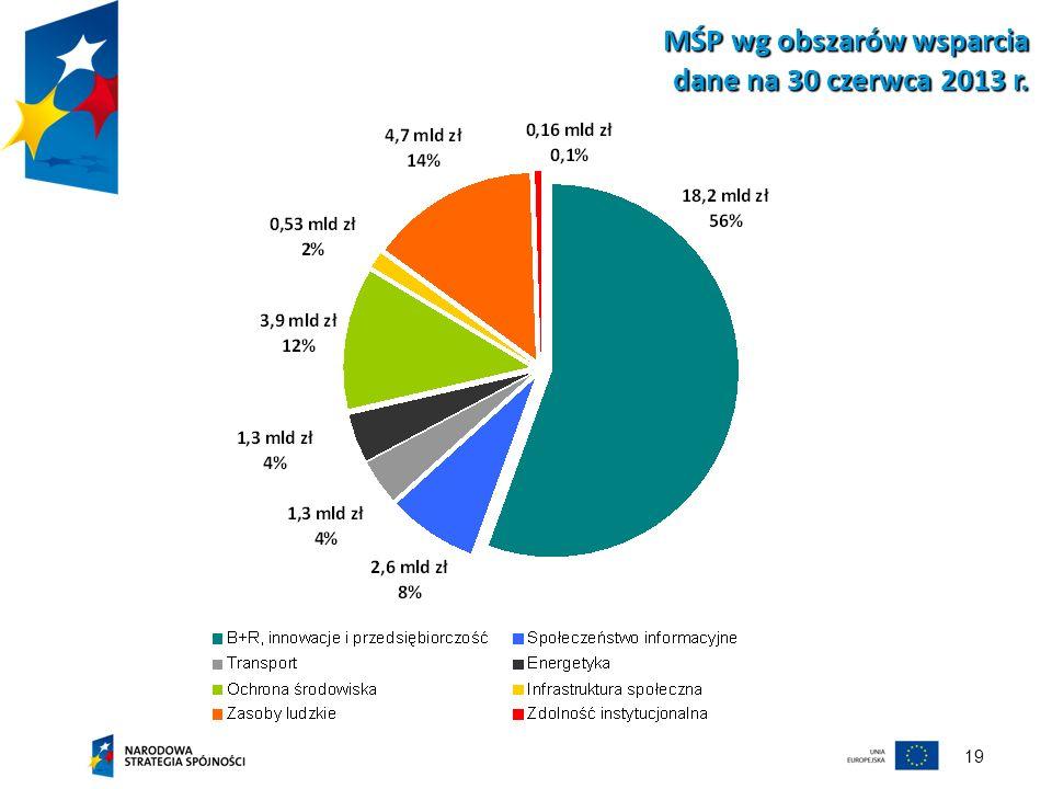 19 MŚP wg obszarów wsparcia dane na 30 czerwca 2013 r.