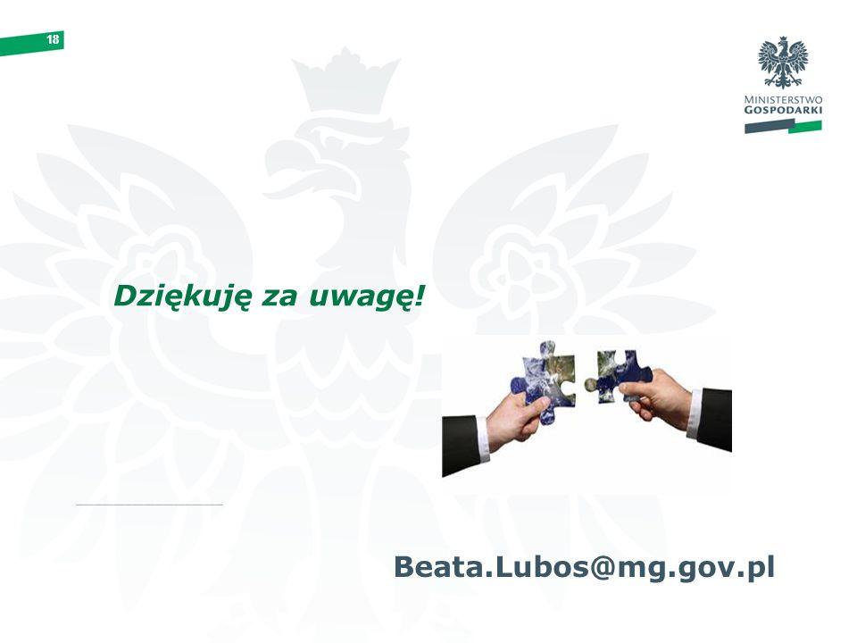 18 Dziękuję za uwagę! Beata.Lubos@mg.gov.pl