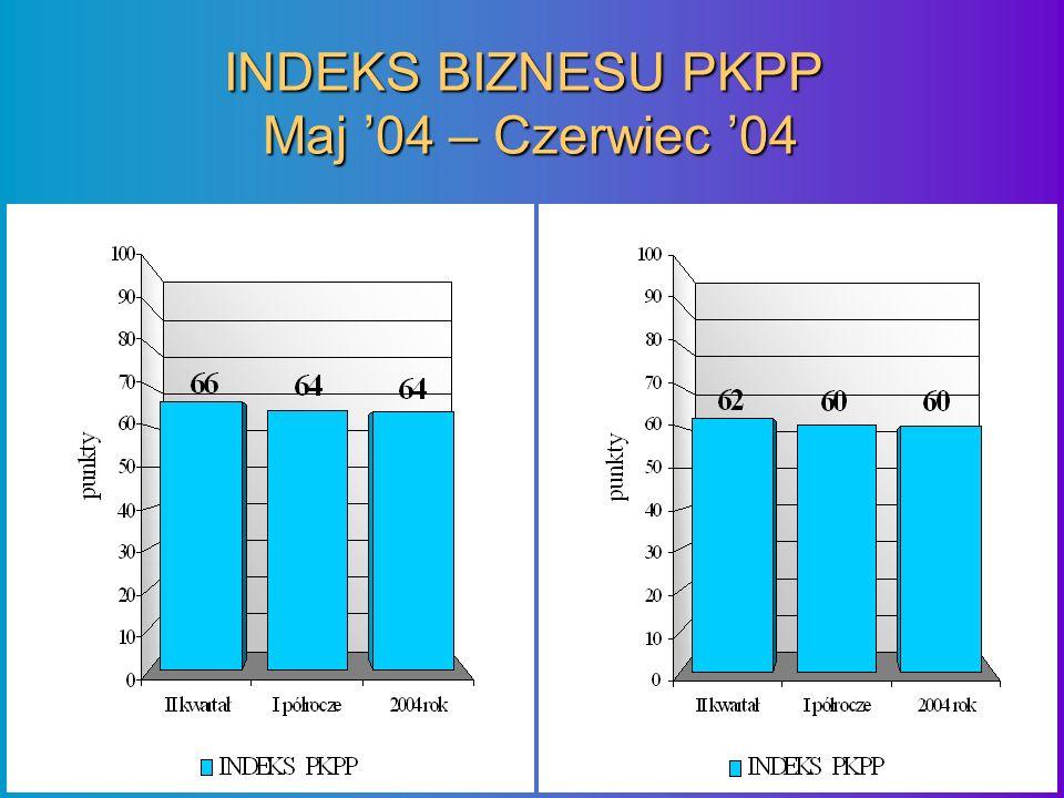 INDEKS BIZNESU PKPP Maj 04 – Czerwiec 04